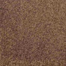 Ковролин Associated Weavers Tresor 040