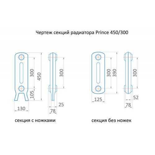 Радиатор чугунный Exemet Prince 450/300
