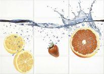 Декор Mono (MY2М304D) апельсин бел 25х35