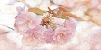 Панно Alma Ceramica Медея Цветы из 6 плиток 120х60